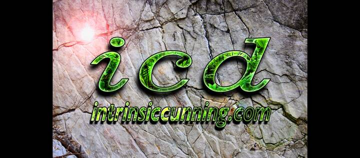 New website up at ICD check it out!!!