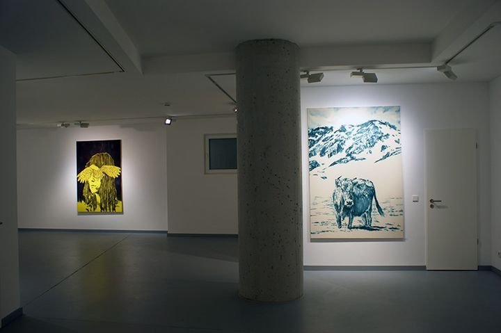Dieter Mammel: Iceland - The Cyan Cycle